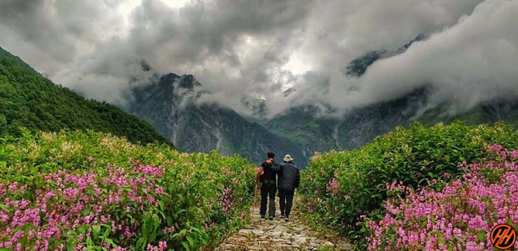 VALLEY OF FLOWERS IS THE BEST PLACE FOR TRAVEL